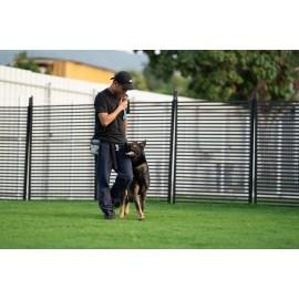 犬隻寄宿訓練課程